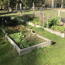 Garden Beds - Community Garden, Halls Gap